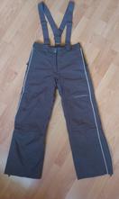 Lyžiarské nohavice, alpine pro,s