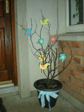 aj suche konariky mozu ozit - tento stromcek nas rozveselil farbou kym sme cakali na jar....