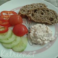 tunákovo-vajíčková pomazánka z domácího sýra s pečivem a zeleninou