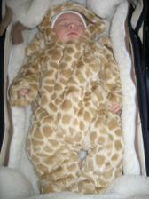 macko je mi maly,tak mi rodicia kupili geparda:-))