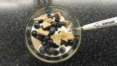 Kozi jogurt, cucoriedky a domaca datlova susienka