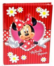 Pamätník disney- minnie mouse,