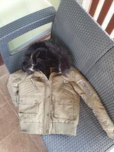 Zimna bunda, fishbone,xs