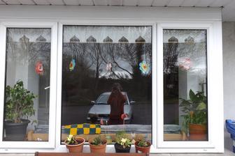 kyticky v okne - podklad tvrdy farebny papier stred je z papierovych kosickov na kolace a vnutro je sietka z ovocia  ako citrony a hned je okno veselsie