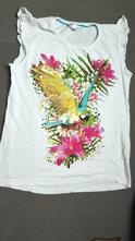 Tričko papagáj, pepco,152