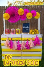 http://thenerdswife.com/2014/05/diy-lemonade-stand-watermelon-lemonade-recipe.html