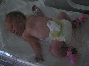 ...musela som na par dni do akvarka (jak hovori tatino inkubatoru)...(1.den)
