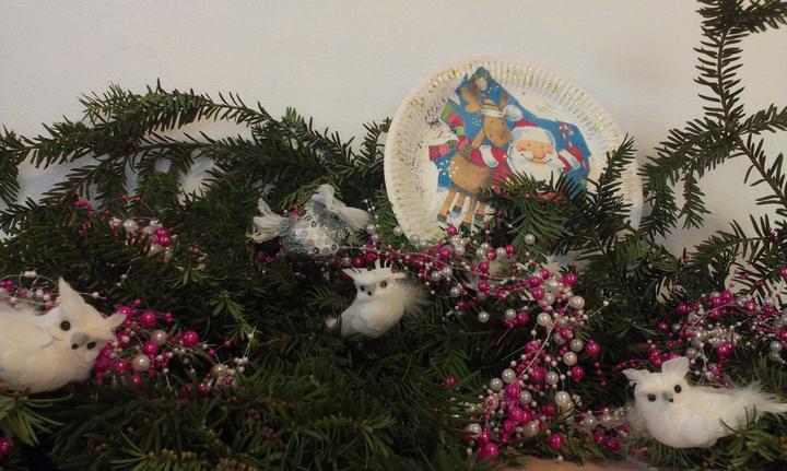 Aj sovicky su biele ... take by sme chceli aj Vianoce :-)
