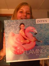 Tento rok berieme Flamingo :) meno zatial nemáme ..