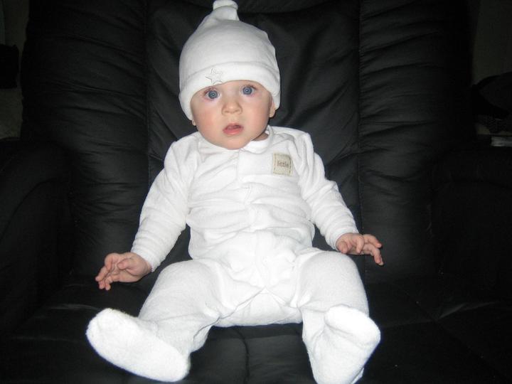 Macko v bielom