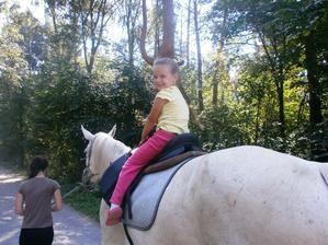 Milujem koníky...