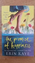 Erin kaye - the promiss of happiness, kniha v anj,