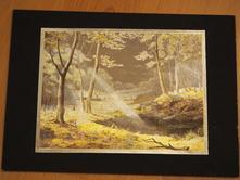 Obrazy a rámy - Strana 19 - Detský bazár  8cdf10bf456
