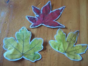 jesenne listy mozu posluzit trebars aj ako vysacky k darcekom....zafixovala som ich foliou, dufajuc, ze farba nevybledne. Podlepene na tvrdy vykres