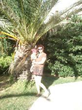 Pri palme