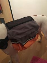 23981ac13b Oblečenie pre zvieratká   Pes - Strana 4 - Detský bazár