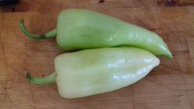 Prvé papriky výborné neštiplavé