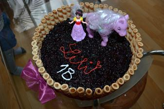 pre nasu lili k 1,5roku :) jednoducha smotanovo-piskotova ovocna torta cucoriedky+cernice+trubicky .. fakt mnaaam..